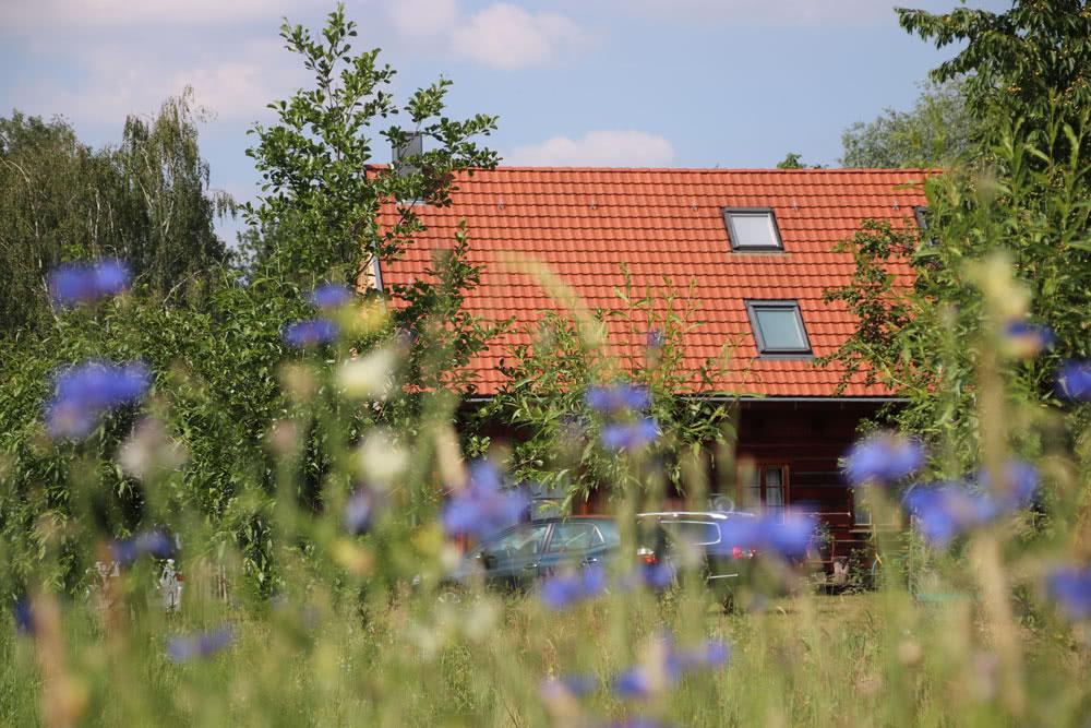 Garten-1.jpg