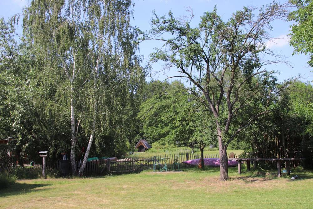 Garten-4.jpg